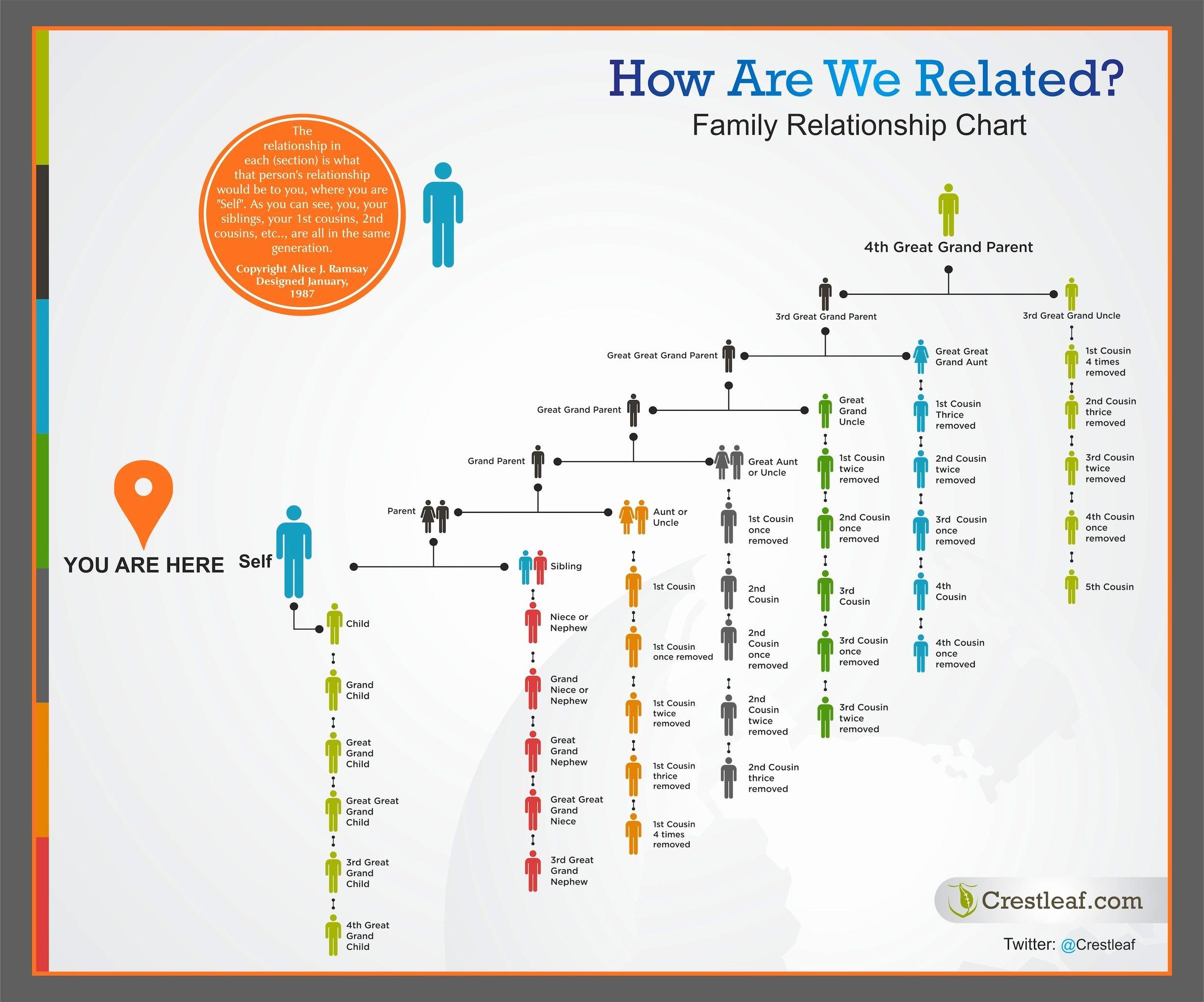 Sample Family Tree Chart Best Of Best 25 Family Relationship Chart Ideas On Pinterest