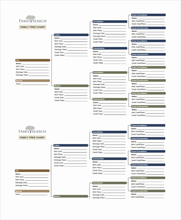 Sample Family Tree Chart Fresh Sample Family Tree Chart Template 17 Documents In Pdf