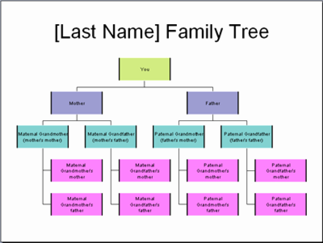 Sample Family Tree Chart New 5 Ways to Create and Display Your Family Tree