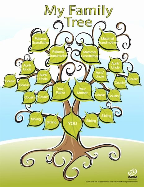 Sample Family Tree Chart Unique Cute Printable Family Tree Family Fun
