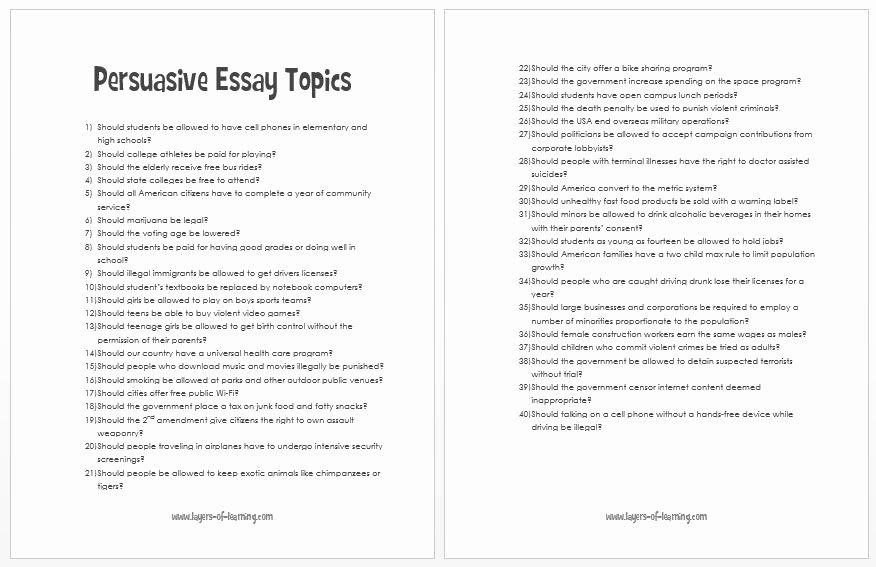 Sample High School Research Paper Elegant Best Persuasive Essays Great College Essay