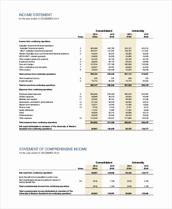 Sample Income Statement format Elegant In E Statement Example 11 Samples In Pdf Word