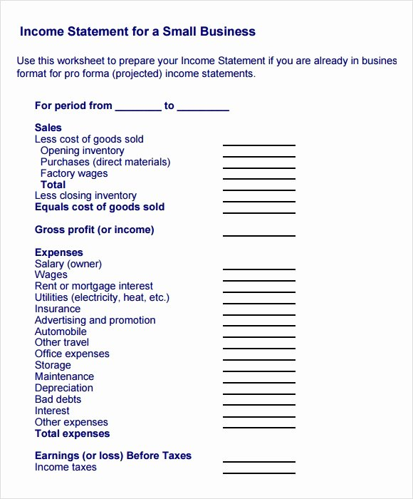 Sample Income Statement format Inspirational Sample In E Statement Example 11 Free Documents