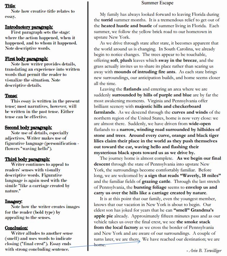 Sample Of Descriptive Essay Best Of Descriptive Essay