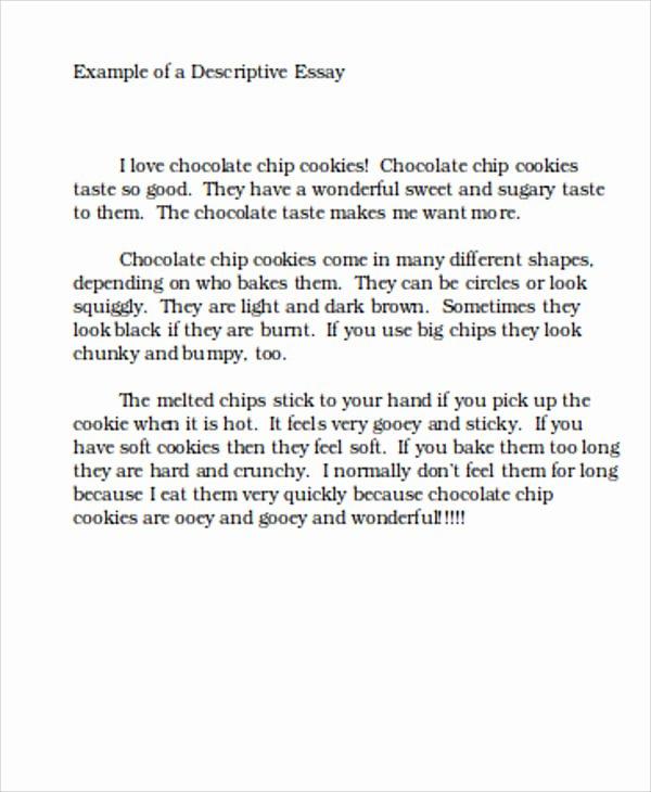 Sample Of Descriptive Essay Best Of Essay Sample In Word 11 Examples In Word
