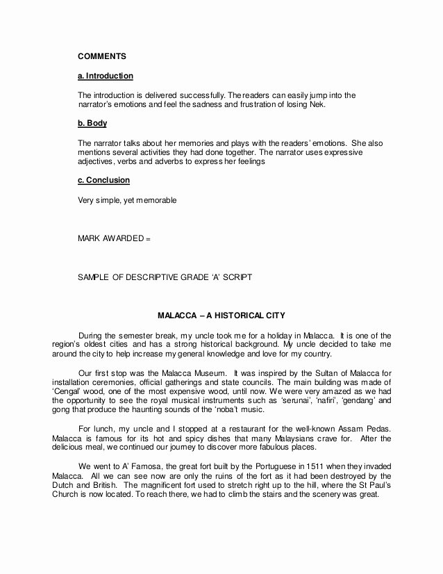 Sample Of Descriptive Essay Best Of Sample Descriptive Essays About A Person How to Write A