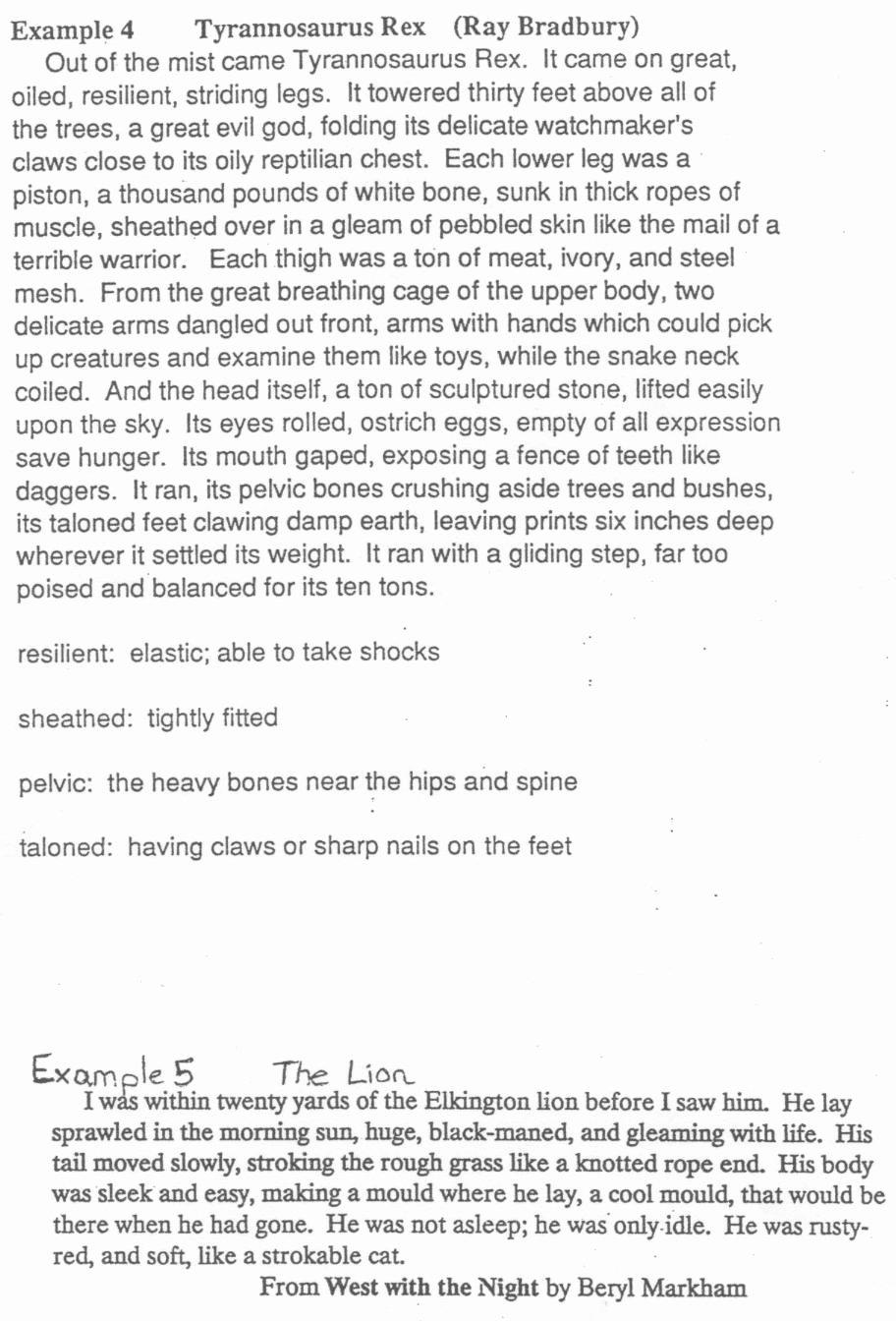 Sample Of Descriptive Essay Fresh Descriptive Paragraphs
