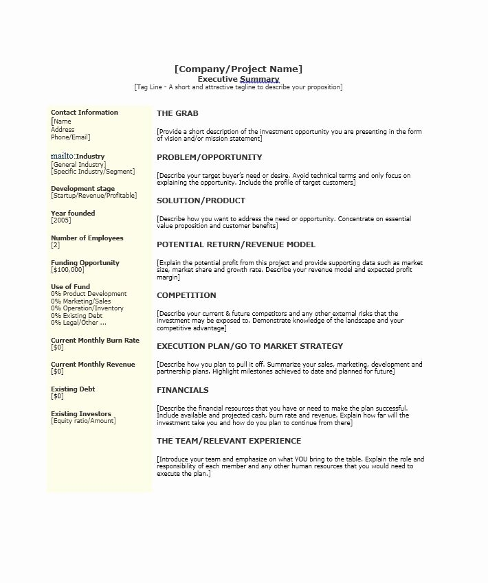 Sample Of Excutive Summary Awesome 30 Perfect Executive Summary Examples & Templates