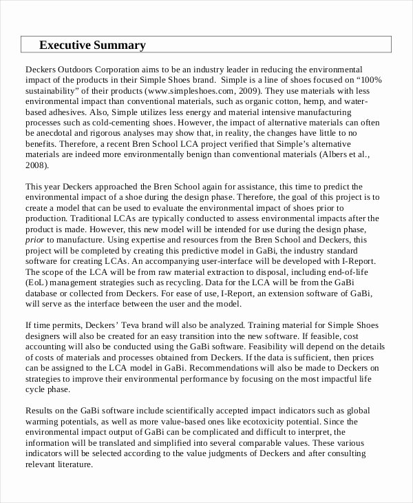 Sample Of Excutive Summary Elegant Executive Summary Construction Examples – Guatemalago