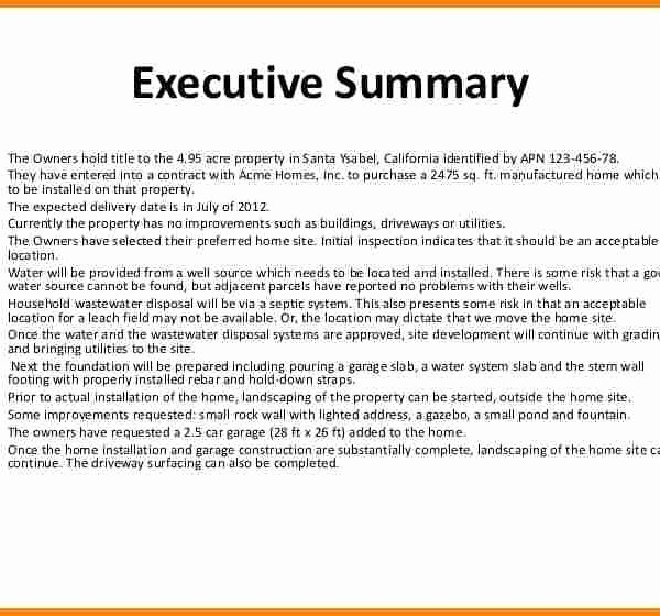 Sample Of Excutive Summary Lovely Executive Summary format for Project Report Image