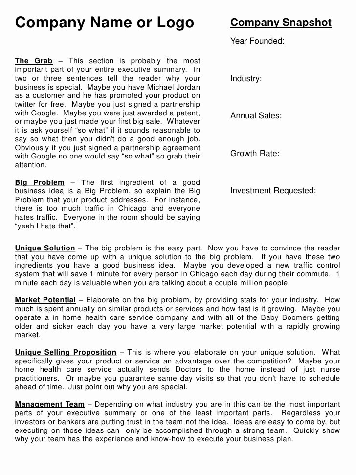 Sample Of Executive Summaries Awesome Executive Summary Template