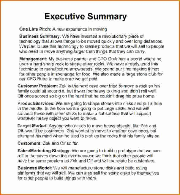 Sample Of Executive Summaries Luxury Executive Summary Sample Template