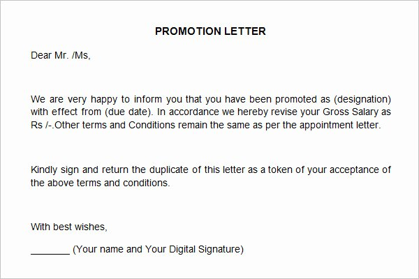 Sample Of Promotion Letters Unique 12 Promotion Re Mendation Letter Examples Pdf