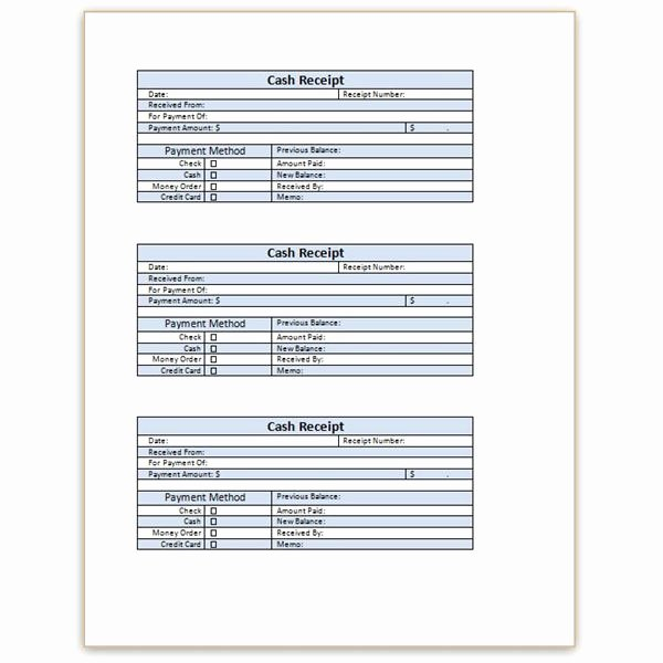 Sample Receipt for Cash Payment Lovely Download A Free Cash Receipt Template for Word or Excel