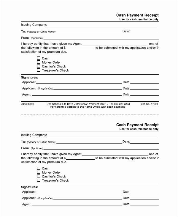 Sample Receipt for Cash Payment New 9 Cash Receipt Templates