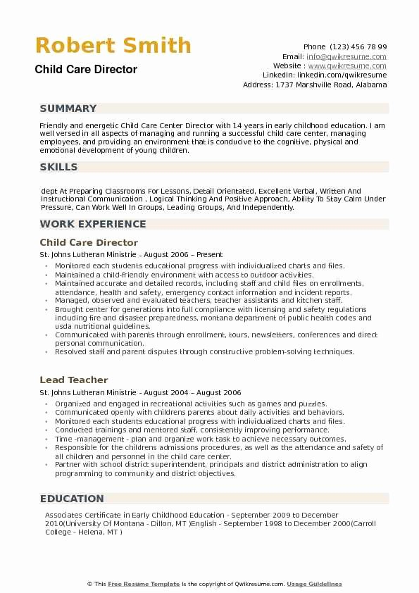 Sample Resume for Child Care New Child Care Director Resume Samples