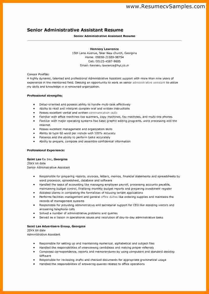 Sample Resumes In Word Awesome 5 Cv Sample In Ms Word