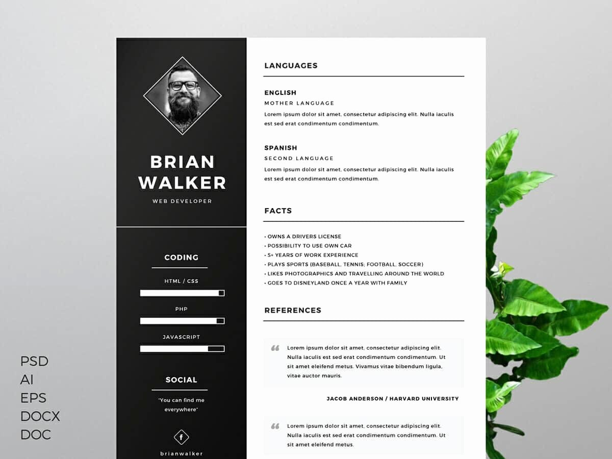 Sample Resumes In Word Lovely Resume Templates for Word Free 15 Examples for Download