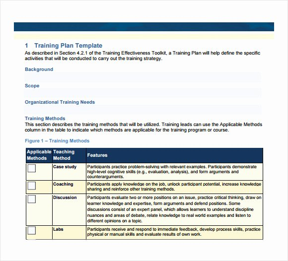 Sample Training Plan Outline Luxury Sample Training Plan 12 Example format