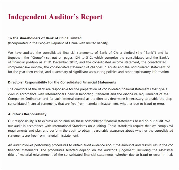Samples Of Audit Report Luxury Sample Audit Report 16 Documents In Pdf Word