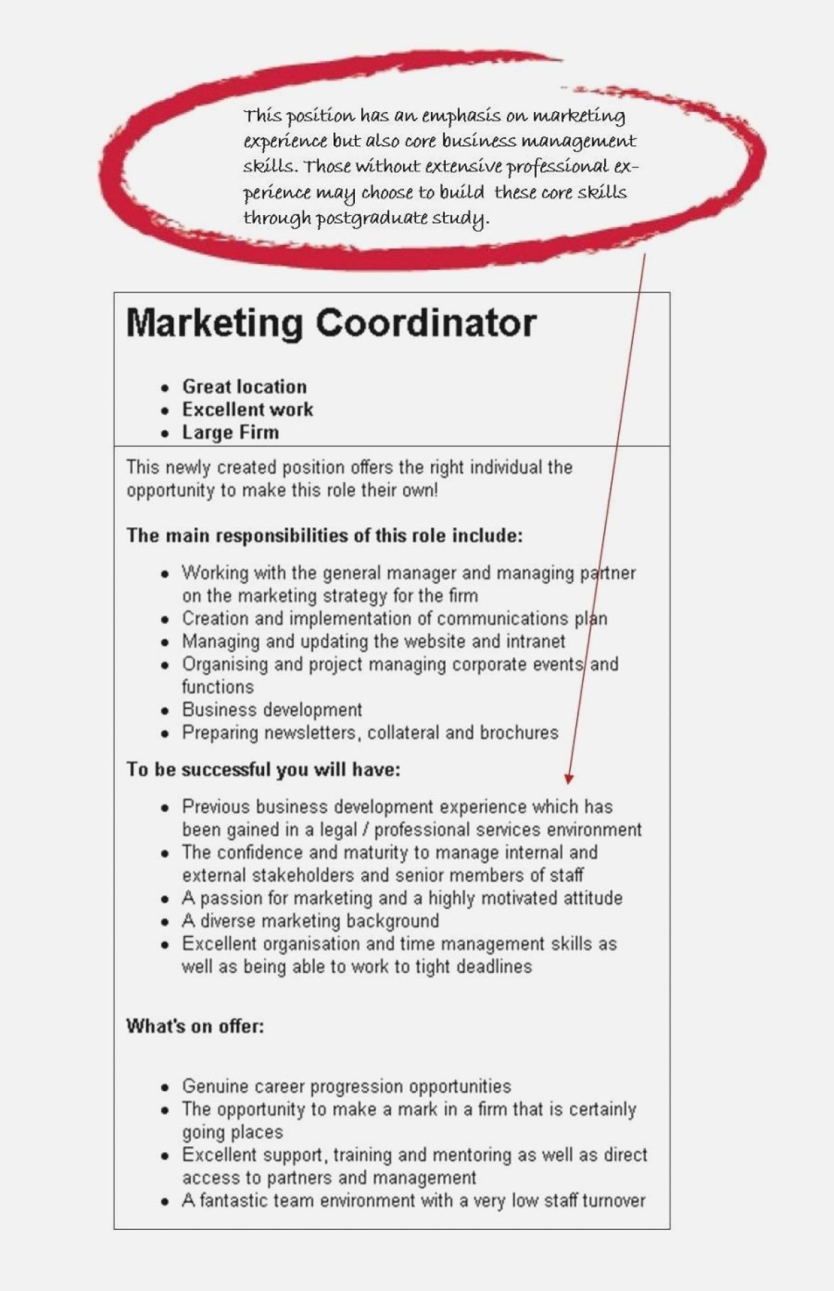 Samples Of Objective On Resume Fresh Job Resume Samples Objectives