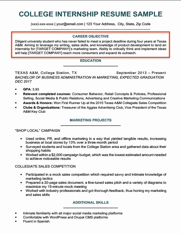 Samples Of Objective On Resume New Resume Objective Examples for Students and Professionals