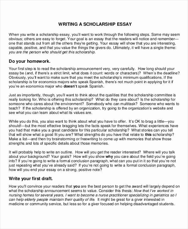 Scholarship Application Essay Sample Beautiful Scholarship Essay format
