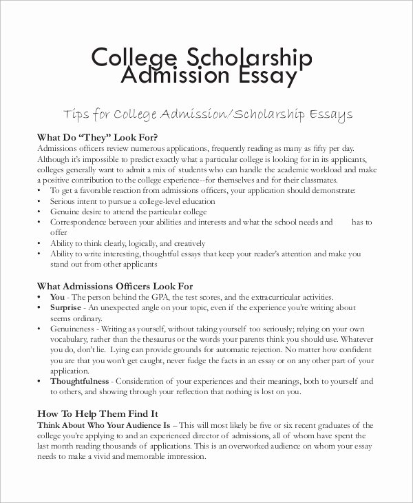 Scholarship Application Essay Sample Best Of College Essay Example 7 Samples In Word Pdf
