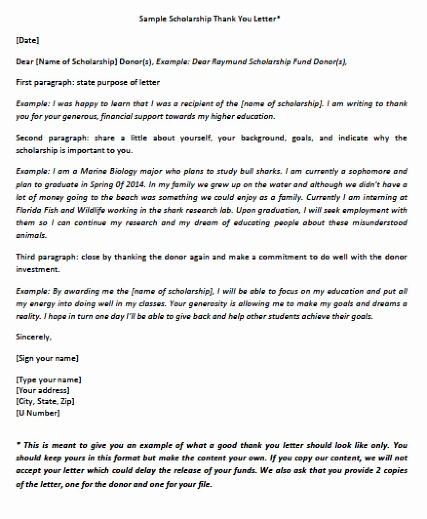 Scholarship Thank You Letter Examples Beautiful Download Scholarship Thank You Letter Templates
