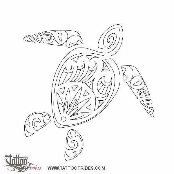 Sea Turtle Stencil Template Awesome Quilting Designs On Pinterest