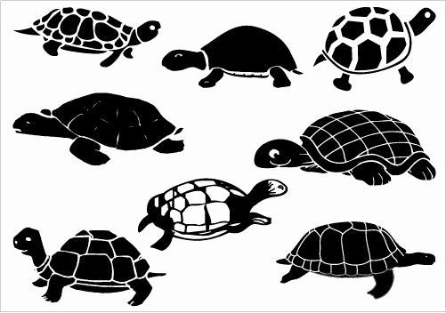 Sea Turtle Stencil Template Best Of so Many Turtles Silhouette Clip Art Pinterest
