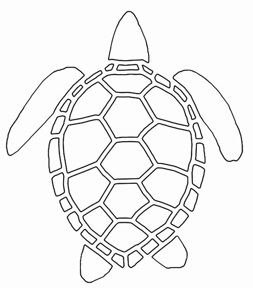 Sea Turtle Stencil Template Best Of Stencil Requests for April 2007