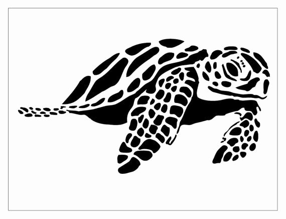 Sea Turtle Stencil Template Inspirational 181 Best Tattoos Turtles Plumeria Hibiscus Images On