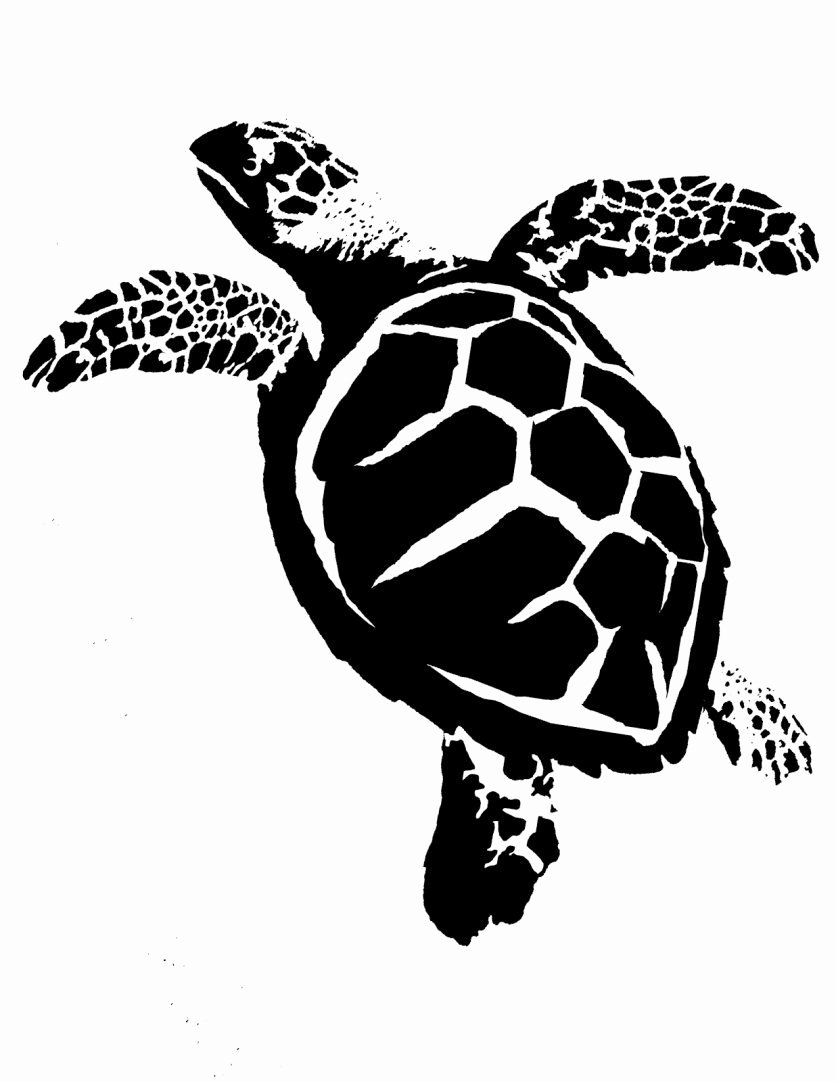 Sea Turtle Stencil Template Lovely Turtle Stencil Templates Pinterest