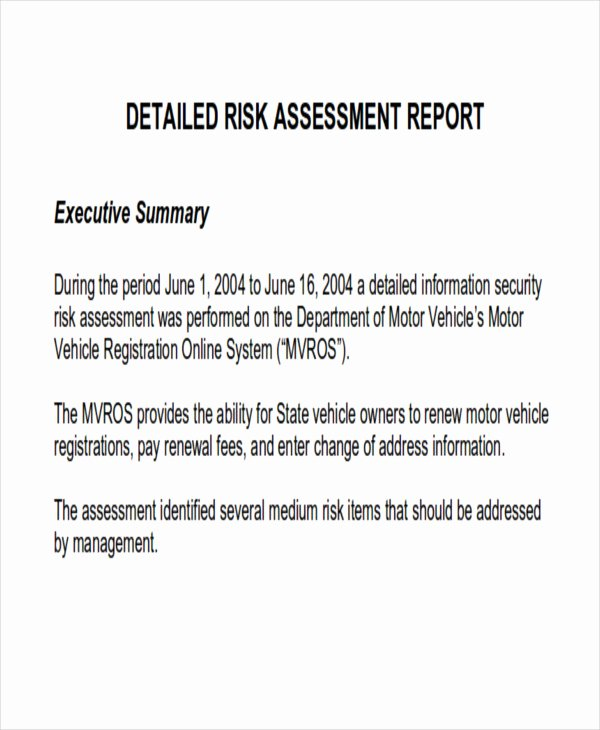 Security assessment Report Template Luxury 10 assessment Report format Samples Docs Word Pages Pdf