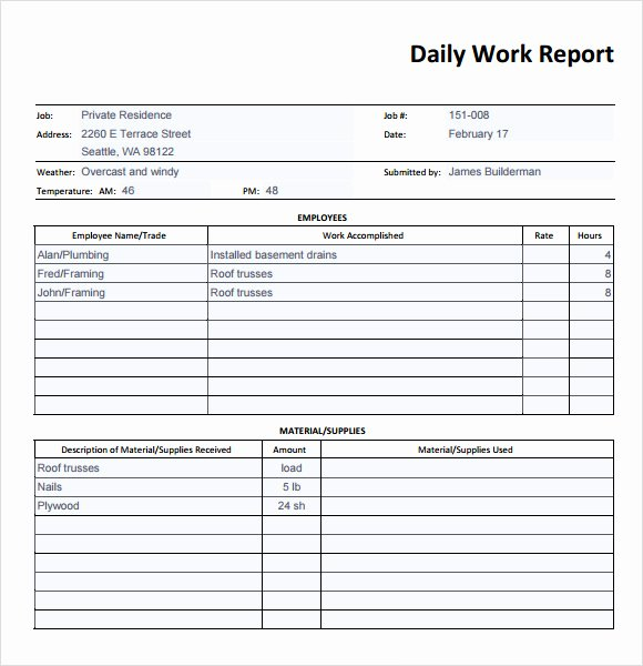 Security Daily Activity Report Template Luxury 19 Sample Daily Reports