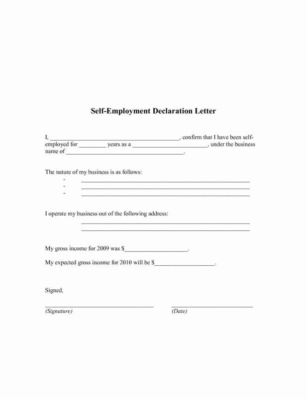 Self Employed Income Verification Letter Best Of Pin by Drive On Template