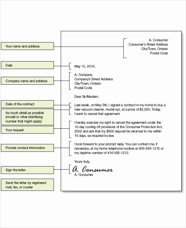 Service Agreement Termination Letter Awesome 37 Sample Termination Letters