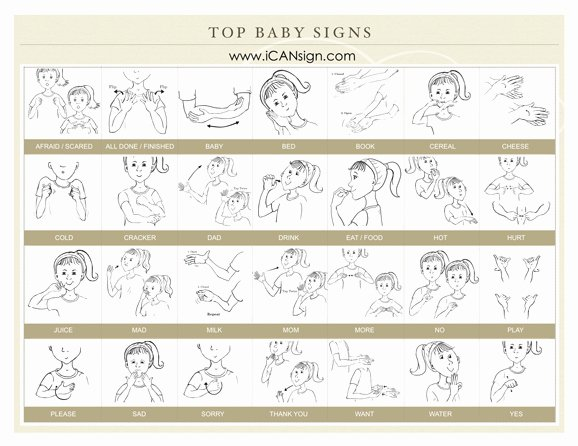 Sign Language for toddlers Chart Beautiful Baby Sign Language