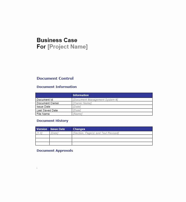 Simple Business Case Examples Lovely 30 Simple Business Case Templates & Examples Template Lab