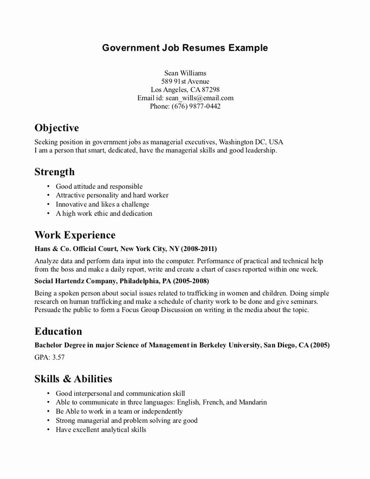 Simple Objective for Resume New the 25 Best Career Objectives Samples Ideas On Pinterest