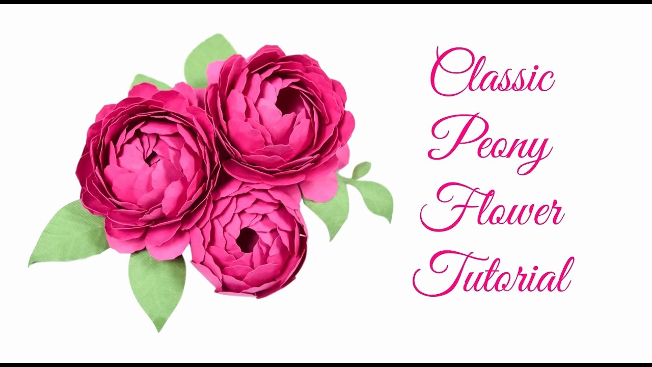 Small Paper Flower Templates Beautiful Step by Step Easy Peony Paper Flower Tutorial