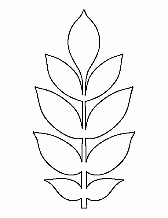 Small Paper Flower Templates Elegant Pin by Muse Printables On Printable Patterns at