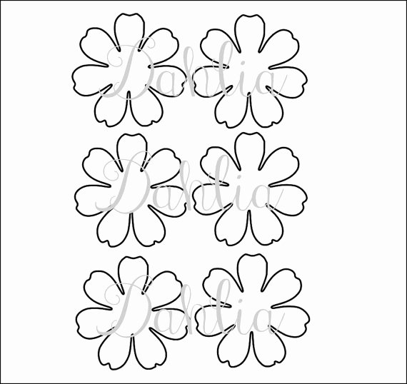 Small Paper Flower Templates Fresh Diy Printable Flower Templates Pdf Petal Templates Diy