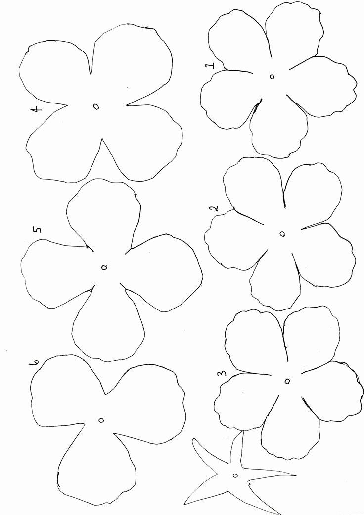 Small Paper Flower Templates Inspirational 767 Best Handmade Flowers Paper Images On Pinterest