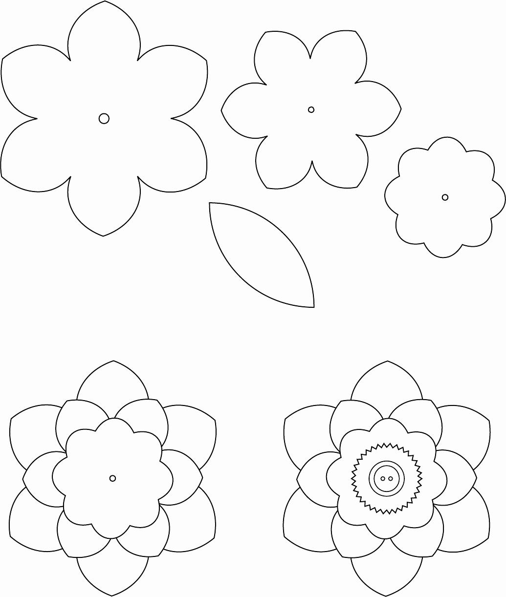 Small Paper Flower Templates Lovely Flower Template 1 трафареты цветы Pinterest