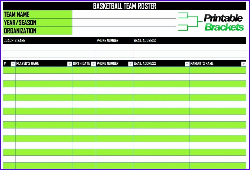 Snack Schedule Template for Sports Beautiful 12 Baseball Lineup Excel Template Exceltemplates