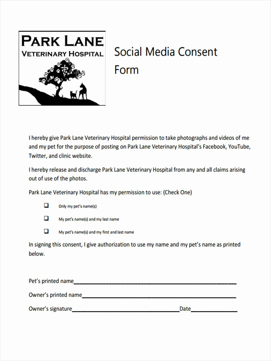 Social Media Permission form Awesome 8 Media Consent form Samples Free Sample Example
