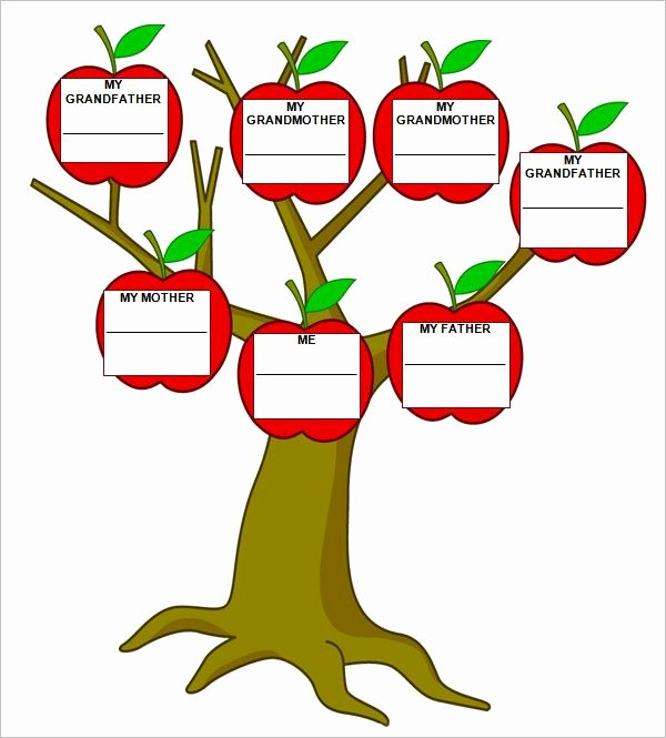 Spanish Family Tree Template Lovely 9 Free Family Tree Templates
