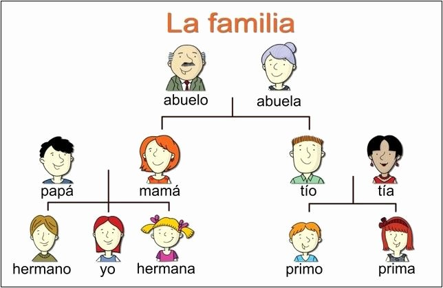 Spanish Family Tree Template New Dvd Video Movie Copy Copying Editing Burning software